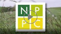 Video NPPC SK